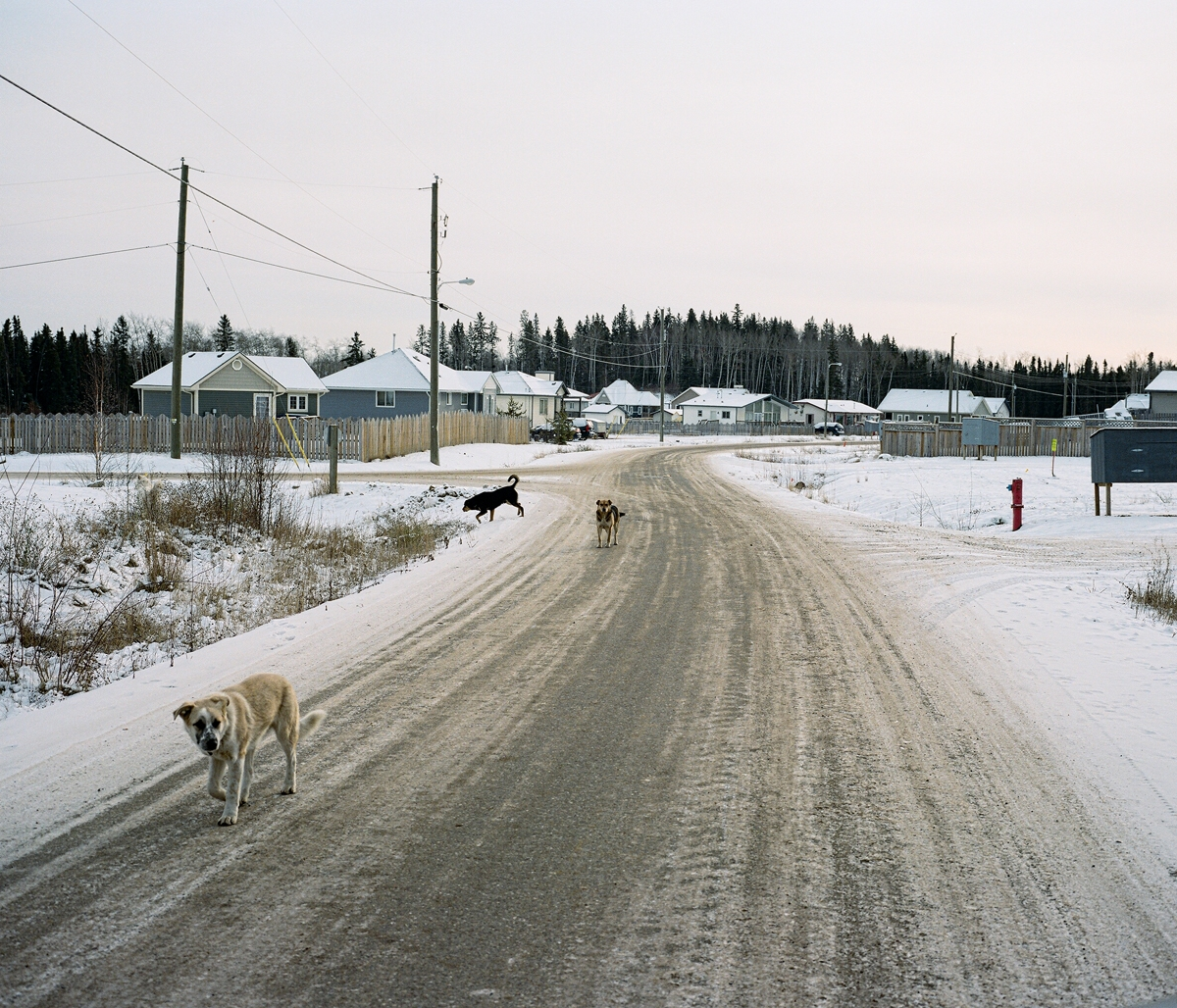 http://lethwilliams.dk/files/gimgs/th-13_Athabasca-WEB-003.jpg